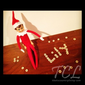 elf on the shelf d