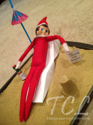 elf on the shelf z