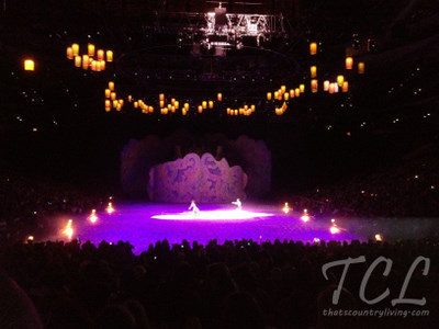 disney on ice 6