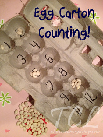 egg carton counting title
