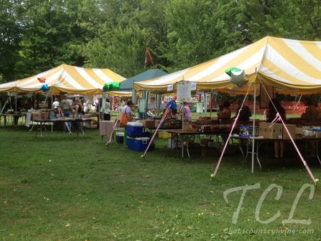 tinicum arts festival d