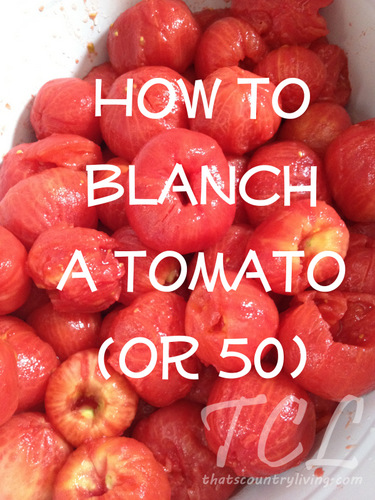 how to blanch a tomato