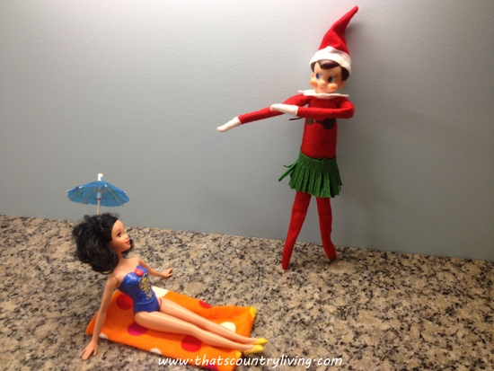 elf on the shelf 1217