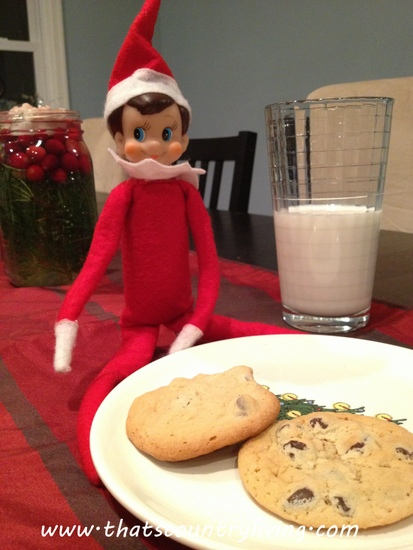 elf on the shelf 1225 3