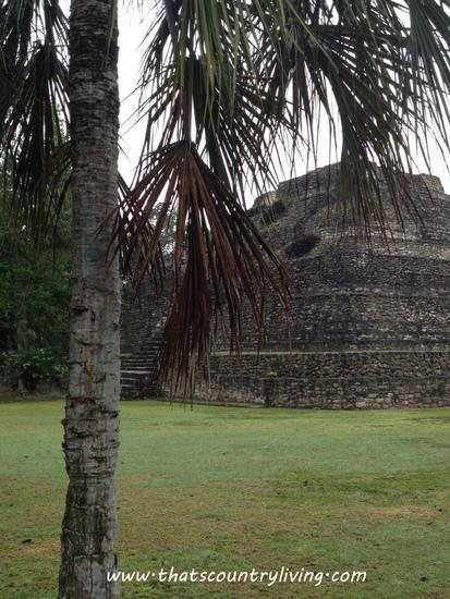 Chacchoben Mayan Ruins Costa Maya e