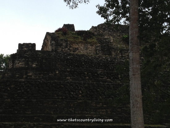 Chacchoben Mayan Ruins Costa Maya g