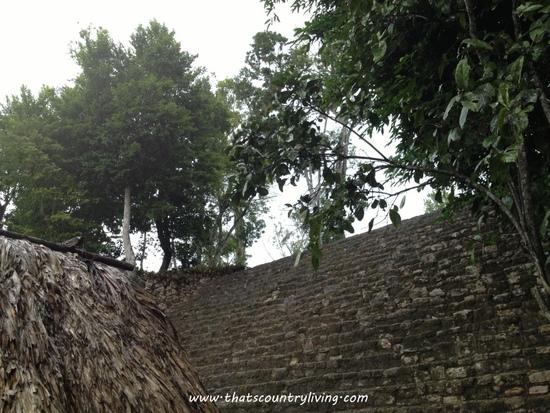 Chacchoben Mayan Ruins Costa Maya q