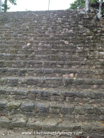 Chacchoben Mayan Ruins Costa Maya s