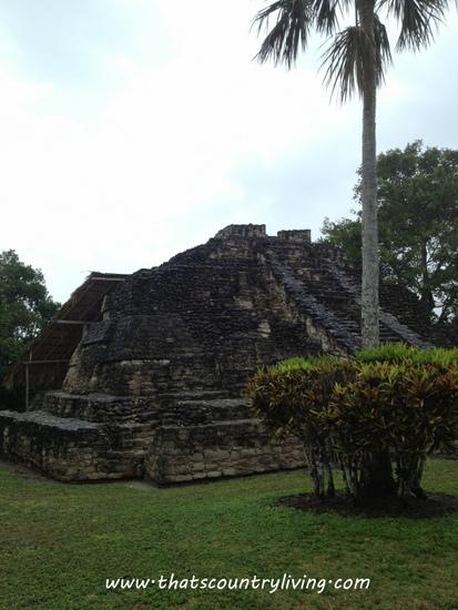 Chacchoben Mayan Ruins Costa Maya w