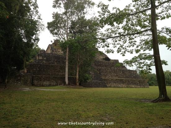 Chacchoben Mayan Ruins Costa Maya x