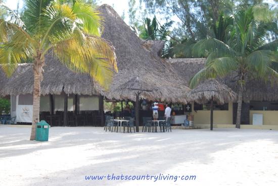 Passion Island i