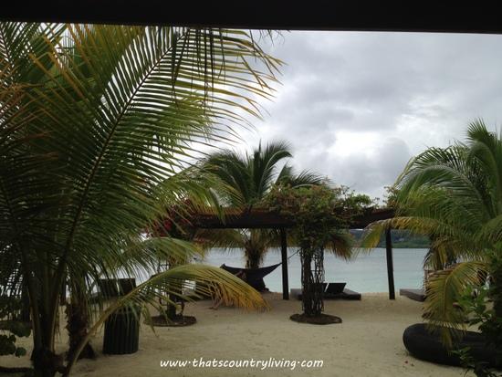 Roatan Honduras Mahogany Beach c