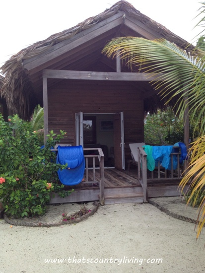 Roatan Honduras Mahogany Beach d
