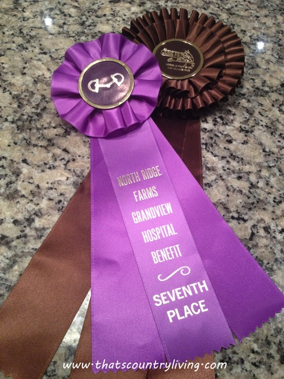 horse show ribbons 1