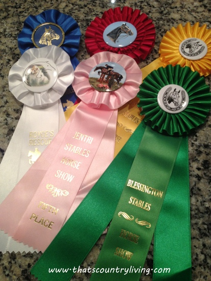 horse show ribbons 2
