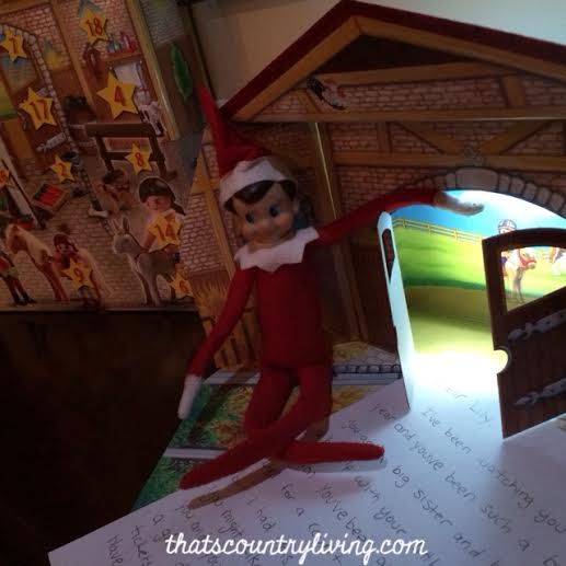 12113 elf on the shelf