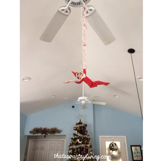 121913 elf on the shelf