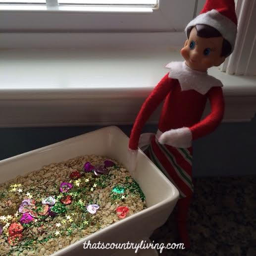 Elf on the Shelf Magic Christmas Garden m
