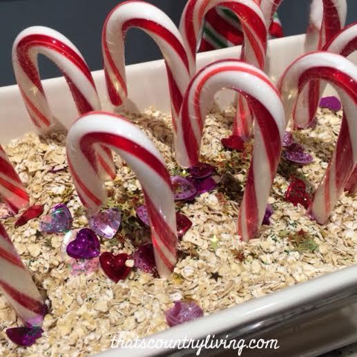 Elf on the Shelf Magic Christmas Garden o