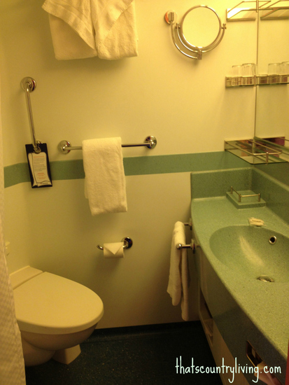 carnival cruise glory bathroom b
