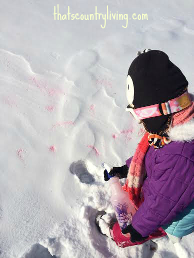 snow paint wm 7